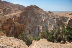 Глубокое ущелье горы в пустыне Стоковые Фотографии RF