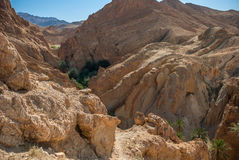 Глубокое ущелье горы в пустыне Стоковые Фото