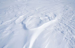 Глушь Snowy Стоковая Фотография RF