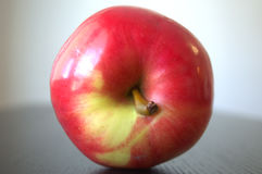 Глянцеватое красное яблоко Стоковые Фотографии RF