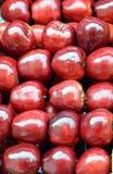 Глянцеватые красные яблоки Стоковое фото RF
