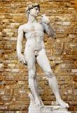 Давид стоковые изображения