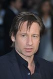 Давид Duchovny стоковое фото rf