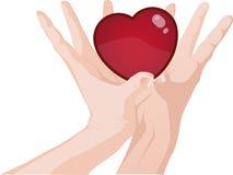 Дайте вам мое сердце Стоковые Фото