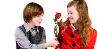 Дайте ей розу стоковые изображения rf