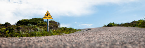 Дайте нам пролом - знак змейки Стоковое Фото