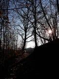 Далеко в небе Стоковое фото RF
