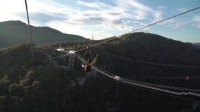Дальний план скачки неопознанного человека bungy с 207 m стальной висячий мост сток-видео