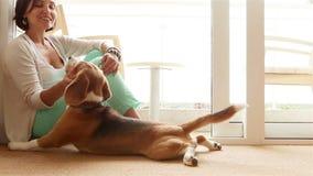 Дама ласково штрихуя ее собаку бигля видеоматериал
