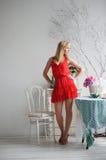 Дама в красном цвете Стоковые Изображения RF