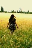 Дама в поле Стоковые Фотографии RF