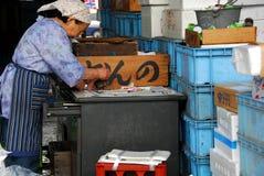 Дама магазина рыб Стоковая Фотография RF