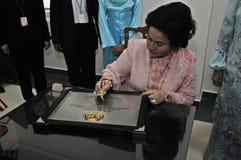 Дама Малайзии первая стоковое фото