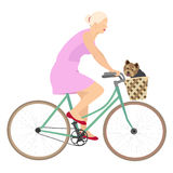 Дама на велосипеде с йоркширским терьером Стоковые Изображения RF