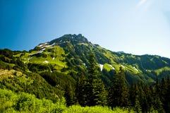 Дама Пик в горной цепи Cheam, Британская Колумбия Стоковое Фото