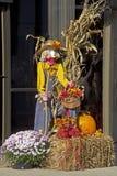 Дама Чучело, связки сена, тыквы, и красочные мамы Стоковые Фото
