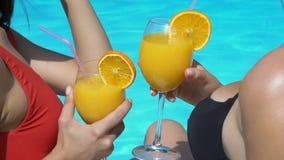 Дамы clinking стекла коктейля около бассейна, отдыхая в роскошном отеле, приятельство акции видеоматериалы