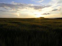 датский заход солнца ландшафта Стоковая Фотография