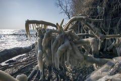 Датский ландшафт береговой линии зимы с льдом Стоковое фото RF
