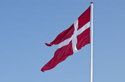датский флаг Стоковое Изображение RF
