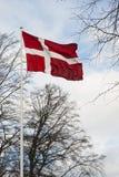 Датский флаг развевая в ветре Стоковое Изображение