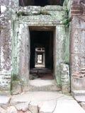 Двери водя к нигде Стоковые Изображения RF
