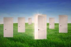 Двери возможности Стоковые Изображения RF