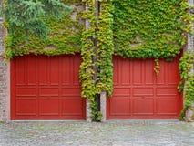 Двери гаража с плющом стоковые фото