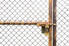 Двери заржавели железная загородка запертая на белой предпосылке стоковое изображение rf