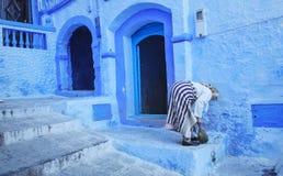 Двери и голубая стена chefchaouen Стоковое Изображение