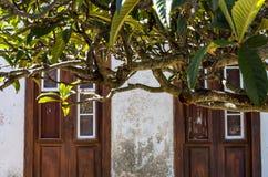 Двери Мадейры, Португалии Стоковая Фотография