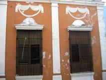 Дверь и окно стоковая фотография rf