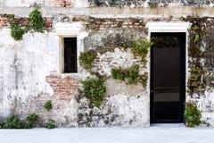 Дверь и Windows на старой кирпичной стене и старой серой стене цемента Стоковое Фото
