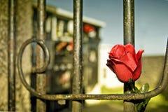 дверь кладбища Стоковые Фотографии RF