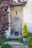 Дверь коттеджа Стоковые Изображения