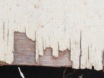 Дверь сарая Стоковые Фото