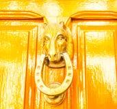 Дверь с латунным knocker в форме головы ` s лошади, beautifu Стоковые Изображения RF