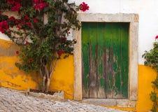 дверь типичная Стоковое фото RF