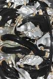 Двигатель поршеня для самолета Стоковая Фотография RF