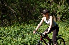движение велосипедиста Стоковые Изображения RF