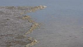 Движение воды к берегу Ветер управляет водой которая затопляет берег акции видеоматериалы