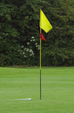 движение гольфа шарика Стоковые Фото