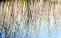 Движение запачканное конспектом Стоковая Фотография