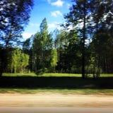 Движение на дороге с деревьями Стоковая Фотография