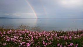 Двойная радуга отражая в морской воде после шторма дождя Стоковые Фотографии RF