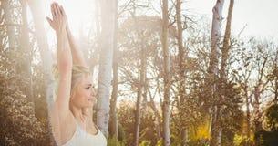 Двойная экспозиция женщины выполняя йогу в лесе Стоковые Изображения