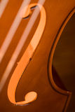 двойник баса Стоковое фото RF