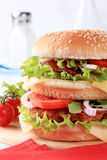 двойник бургера Стоковое Изображение RF