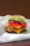 двойник cheeseburger идет к стоковые фотографии rf