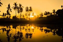 двойное солнце Стоковые Фото